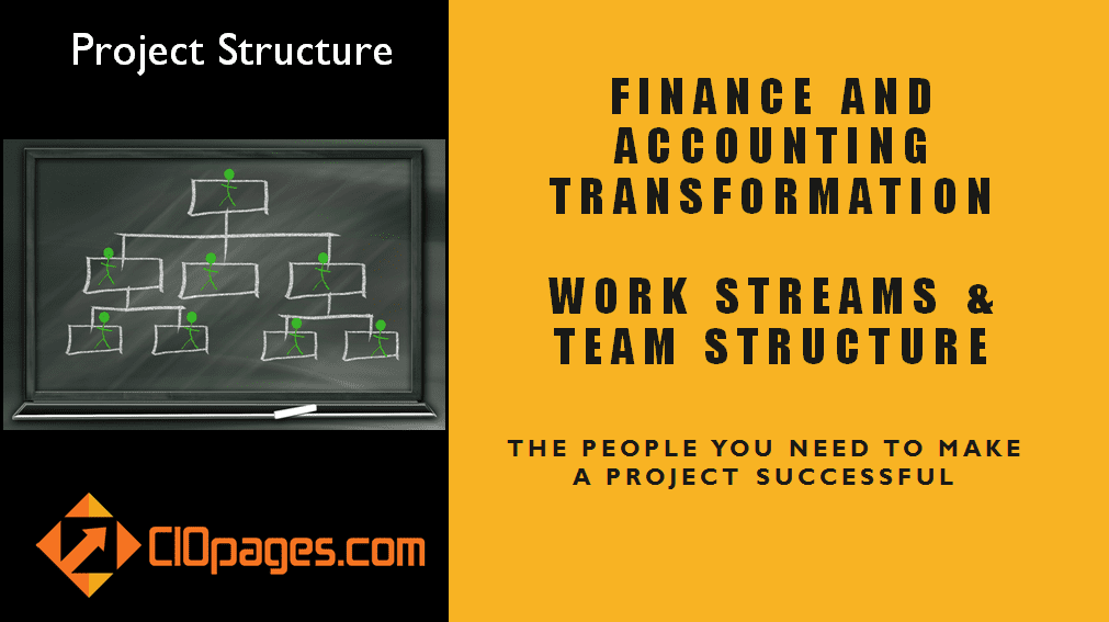 Finance Transformation Project Workstreams and Roles